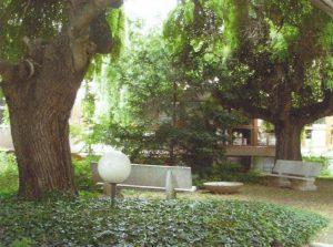 jardin_01